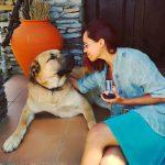 wine tasting and dog company