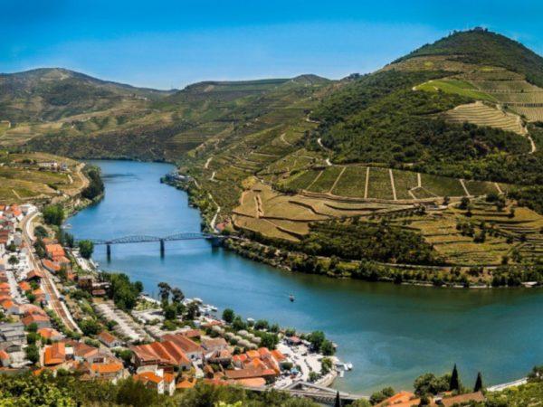 Douro Premium Tour