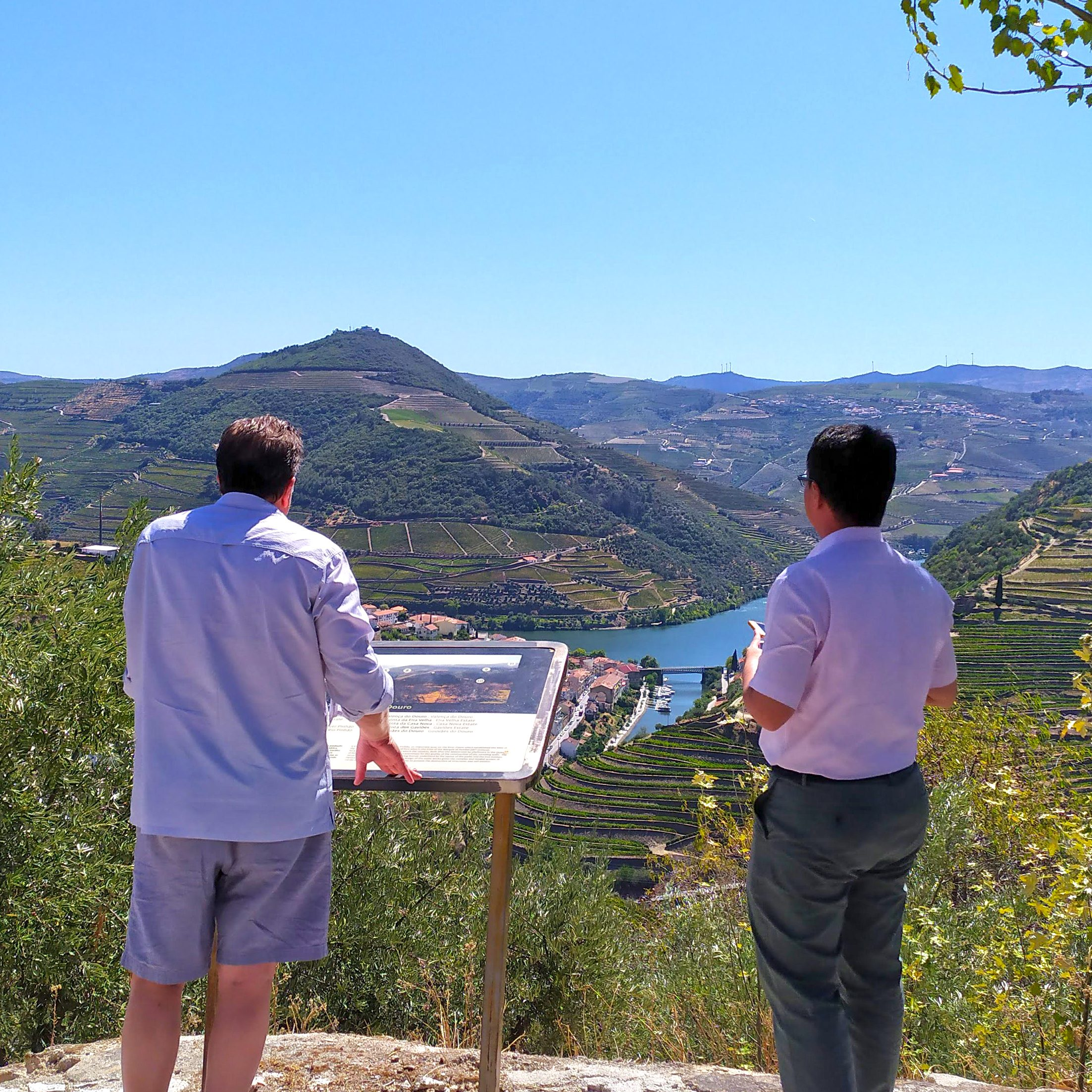 viewpoint in douro looking to the river between mountains