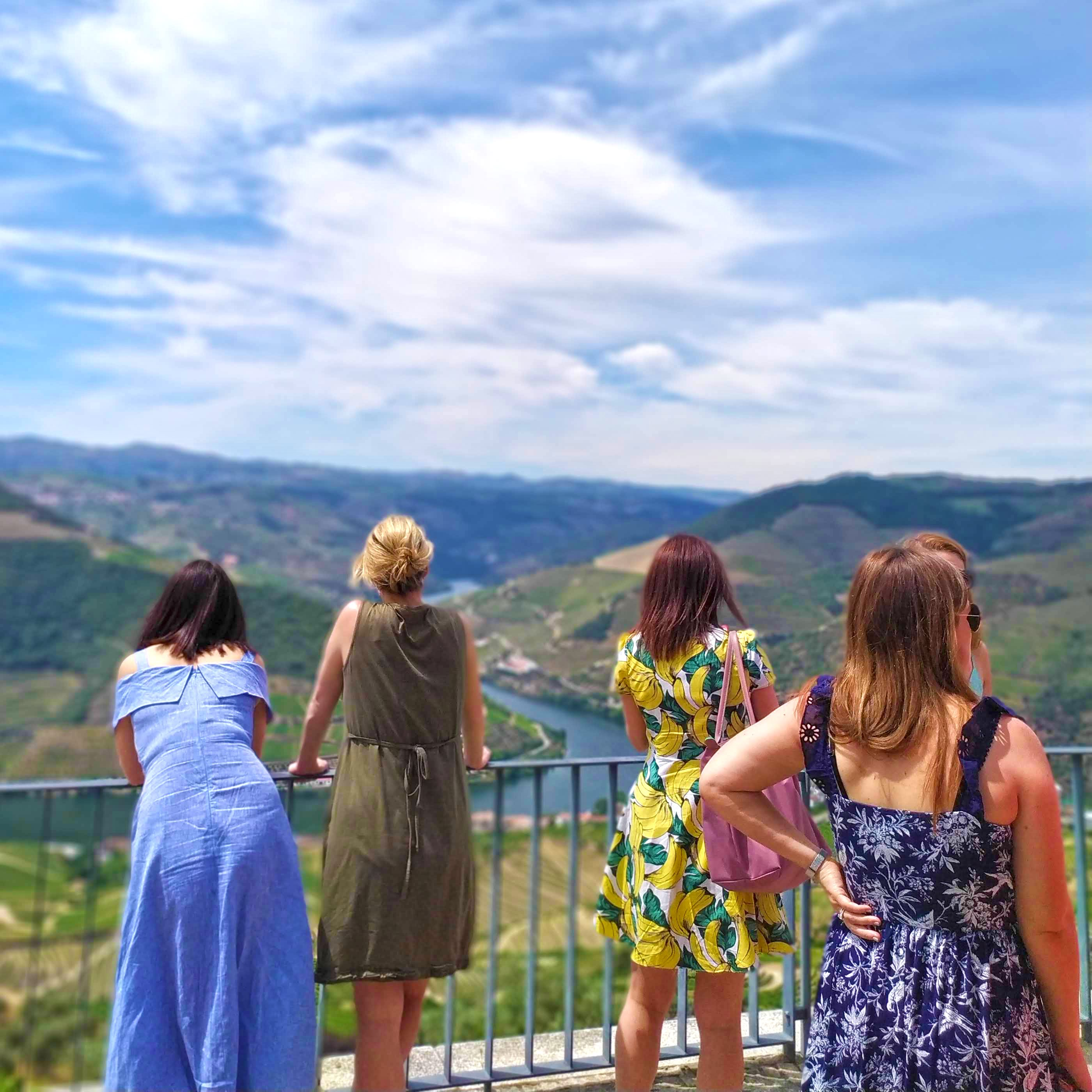 douro valley wine tour experience