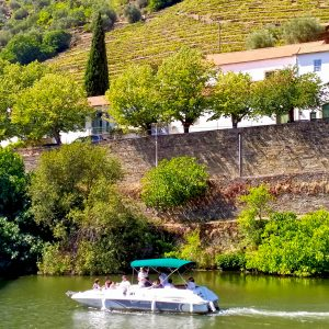 private and intimate boat trip in douro valley