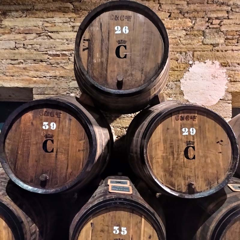 Wine Barrels in Douro Valley